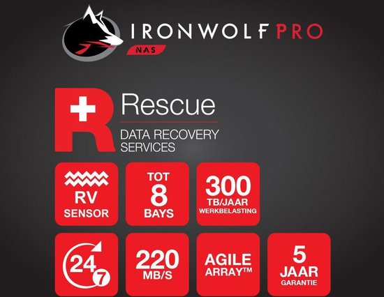 Seagate IronWolf Pro - Interne harde schijf - 2 TB