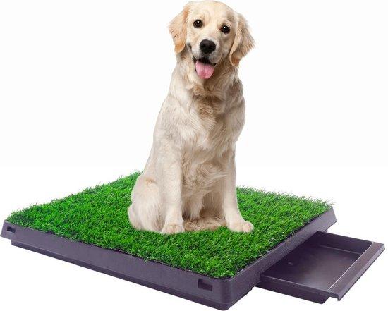 Maoo - Premium hondentoilet - Geurbestendig en hondvriendelijk kunstgras - Uitneembare opvangbak - Indoor en outdoor - 63 x 50 cm