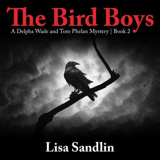 Boek cover The Bird Boys van Lisa Sandlin (Onbekend)