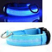 OWO - Honden halsband met led verlichting - Blauw/large 42-53cm
