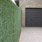 Intergard Kunsthaag tuinscherm taxus 2x3m fijn - Groen