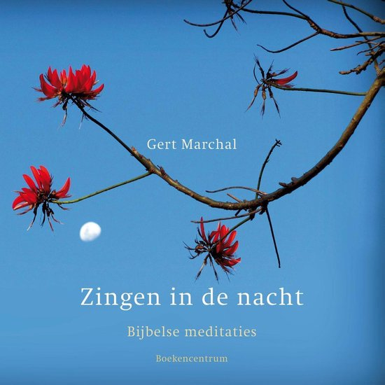 Zingen in de nacht - Gert Marchal |