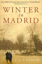 Winter in Madrid