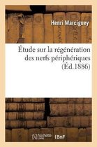 tude Sur La R g n ration Des Nerfs P riph riques