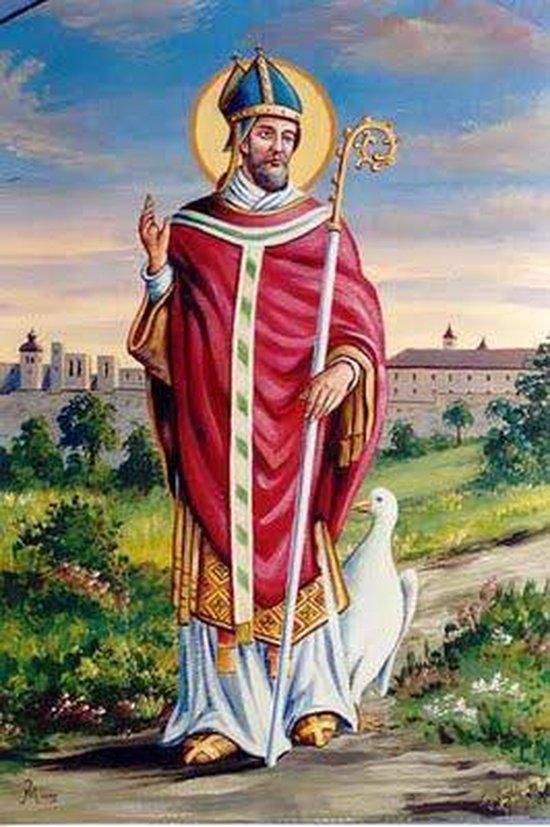 sveti Martin iz Toursa - škof