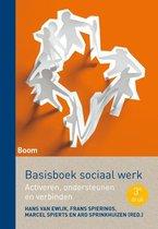 Basisboek sociaal werk