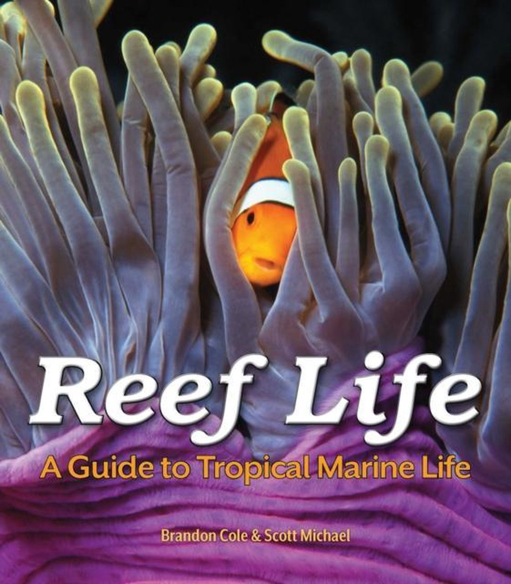 Reef Life - Brandon Cole