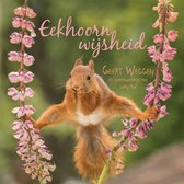 Eekhoorn wijsheid