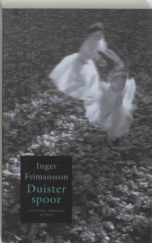 Duister spoor - Inger Frimansson |