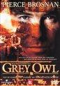 Grey Owl (D)