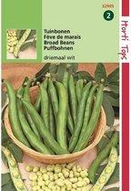 Hortitops Tuinbonen Driemaal wit 20 gram