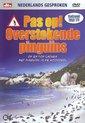 Pas Op Overstekende Pingu