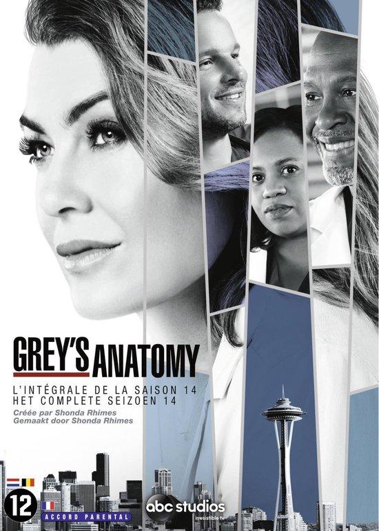 Grey's Anatomy - Seizoen 14
