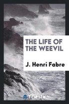 The Life of the Weevil