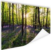 Paarse bloemen in het bos Poster 180x120 cm - Foto print op Poster (wanddecoratie woonkamer / slaapkamer) XXL / Groot formaat!