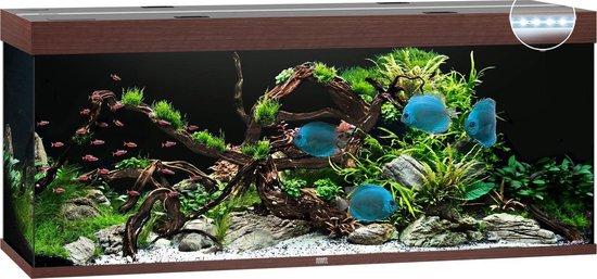 Juwel Aquarium Rio 450 Led 151x51x61 cm - Aquaria - Donker Hout