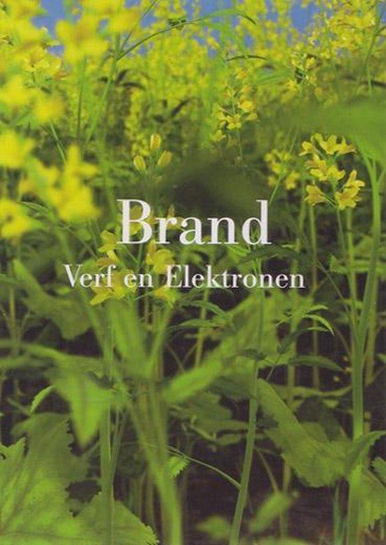 Eelco Brand - Verf en Electronen - H. van Boxtel   Fthsonline.com
