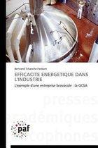 Efficacit Energ tique Dans l'Industrie