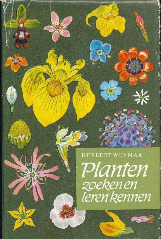 Planten zoeken en leren kennen - Weymar   Readingchampions.org.uk