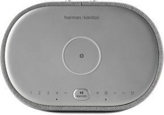 Harman Kardon Citation Oasis - Grijs