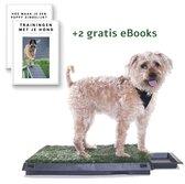Hondentoilet Indoor en Outdoor met Kunstgras - Incl 2 eBooks - Vervanger Puppy Training Pads - Uitneembaar Opvangbak - 65x50 cm