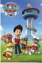 REINDERS Paw Patrol team - Poster - 61x91,5cm
