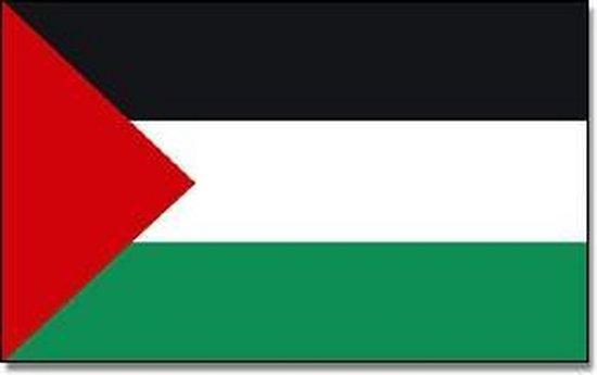bol.com   Vlag Palestina 90 x 150 cm feestartikelen - Palestina landen  thema supporter/fan...