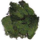 Decoratie mos donkergroen 100 gram - Hobby knutselen materialen herfst/kerst thema