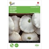 Buzzy - Patisson Custard White