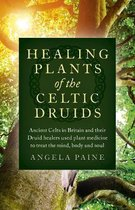 Healing Plants of the Celtic Druids - Ancient Celts in Britain and their Druid healers used plant medicine to treat the mind, body and soul