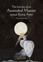 The Journey of an Ascended Master