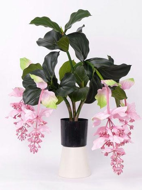 Medinilla kunstplant 65cm