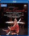 Don Quixote Wiener Staatsoper 2016