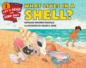 What Lives In A Shell?