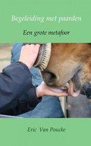 Begeleiding met paarden