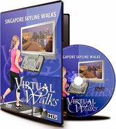 Virtuele Wandelingen - Skyline van Singapore