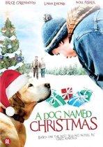 Dog Named Christmas