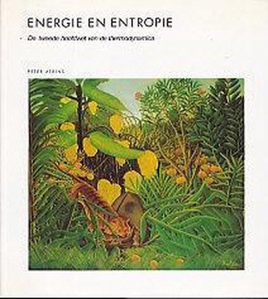 Energie en entropie - Robert C. Atkins |