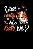 I Just Really Like Cats, Ok?: Cute Cat Notebook