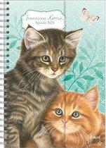 Spiraalagenda (luxe) 'Kittens'