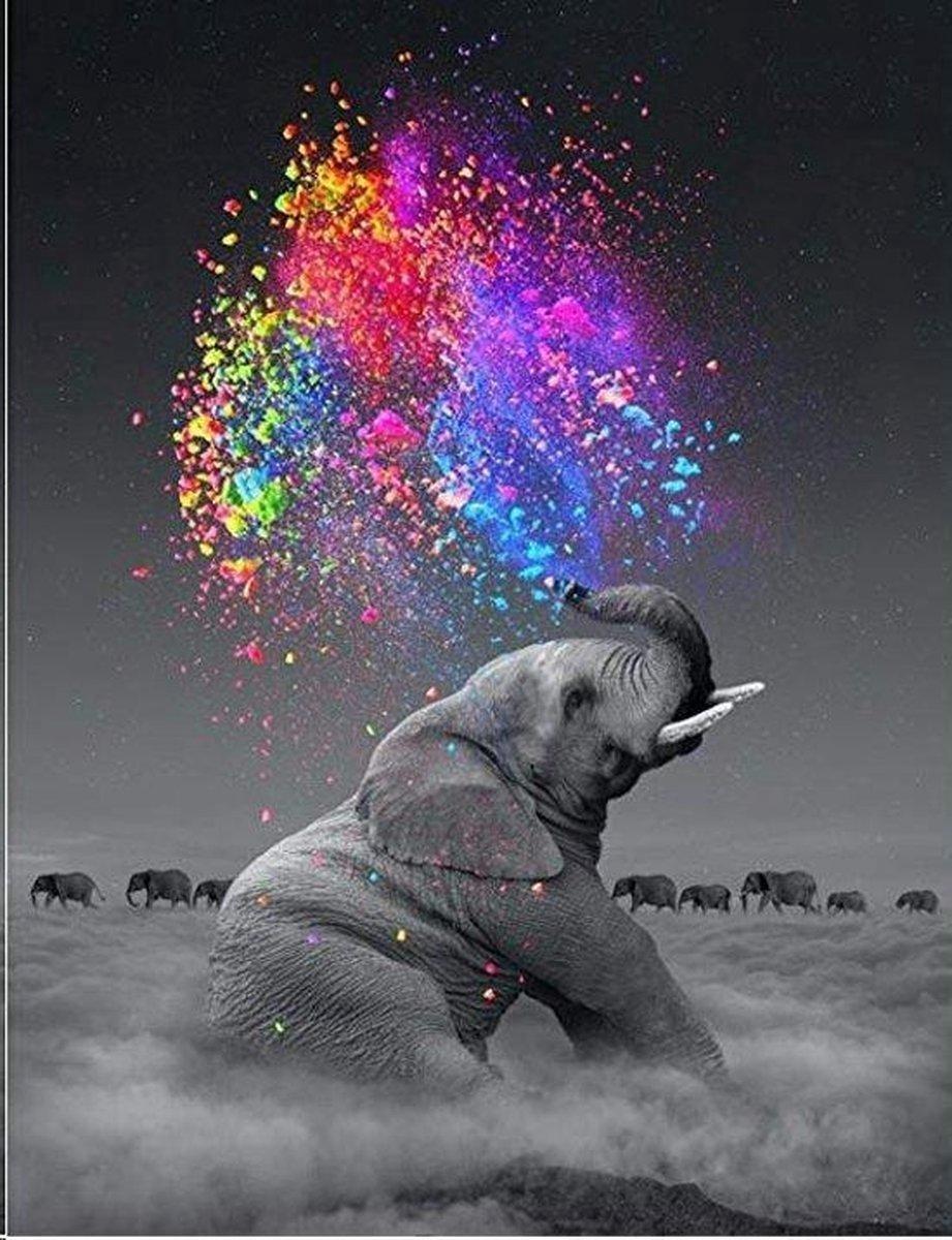 Diamond Painting Volwassenen - Gekleurde Olifant - Dieren - Volledig Pakket - Diamond Painting Kinderen - 30x40 cm