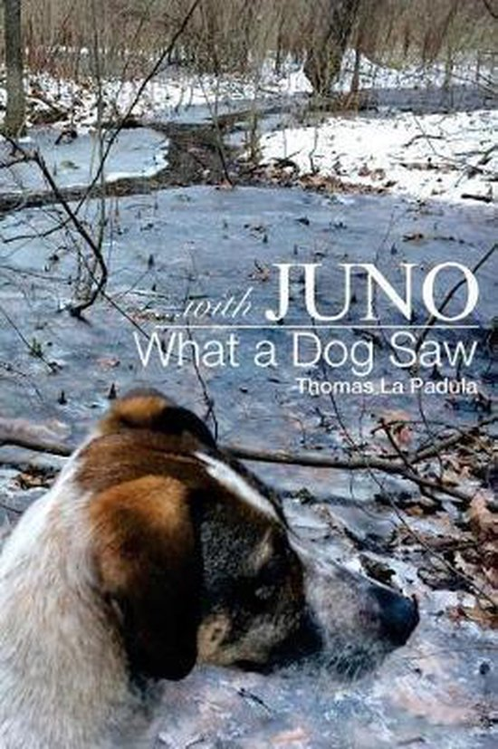 ...with Juno