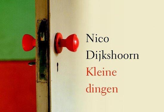 Kleine dingen - Nico Dijkshoorn |