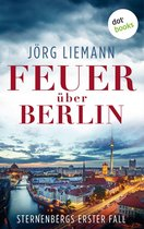 Feuer über Berlin - Sternenbergs erster Fall