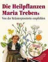 Meine Heilpflanzen Maria Trebens