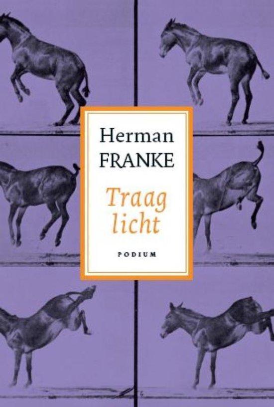 Voorbij ik en waar gebeurd 3 Traag licht - Herman Franke |