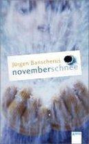 Afbeelding van Novemberschnee
