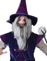 Grijze tovenaars pruik met baard