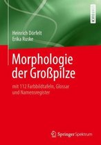Boek cover Morphologie Der Grosspilze van Heinrich Doerfelt