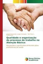 Qualidade e organizacao do processo de trabalho na Atencao Basica